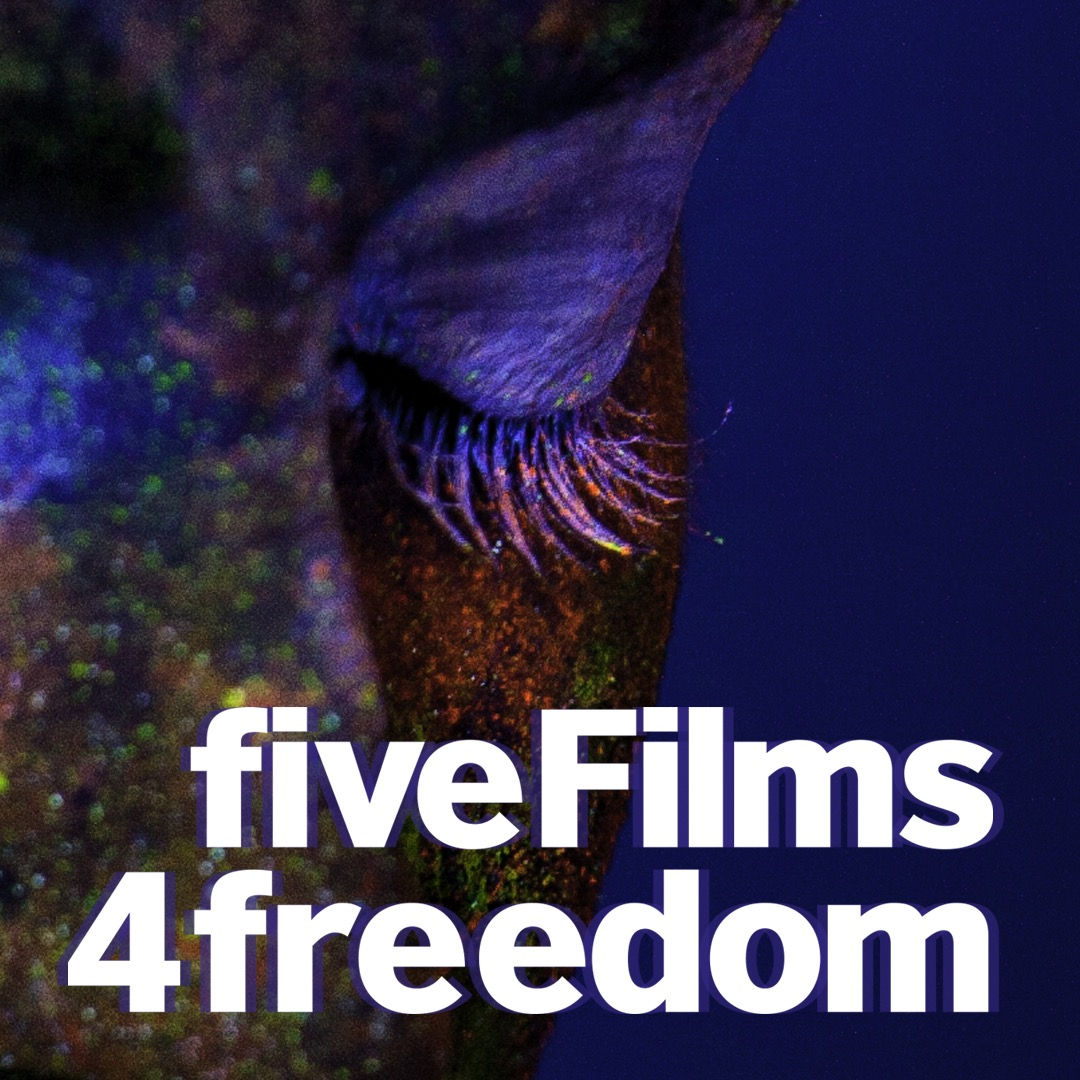 Photo of FiveFilms4Freedom Comes to UCLA