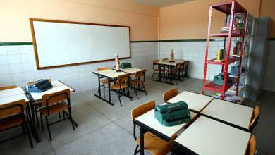 Photo of The New Pedagogy: Dangerous Changes in the Brazilian Education System