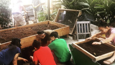 worm farmers gathered, touching soil