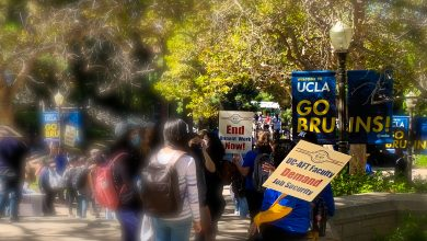 """Several students and UC-AFT members gather on Bruin Walk. One UC-AFT member, wearing a blue t-shirt, is holding a picket sign that says, """"UC-AFT Faculty Demand Job Security."""" Another UC-AFT member wearing a blue t-shirt is holding a picket sign that says, """"End Unpaid Work Now!"""" Near the two picket signs is a UCLA post lamp banner that says, """"Welcome to UCLA GO BRUINS!"""" About six students are standing around the two UC-AFT members. Other students and UC-AFT members are blurred in the background."""
